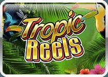 Tropic Reels
